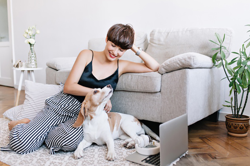 owning or renting a home with pets