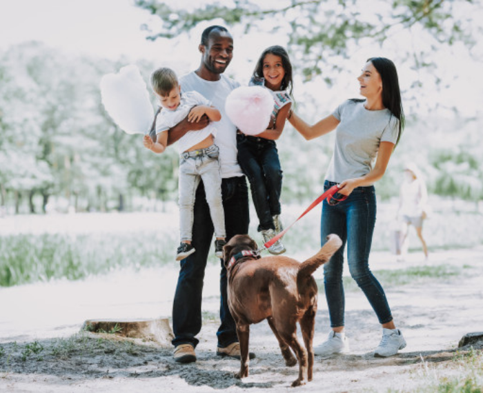 insurance for humans and pets