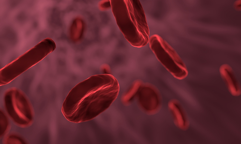 red-blood-cells-blog